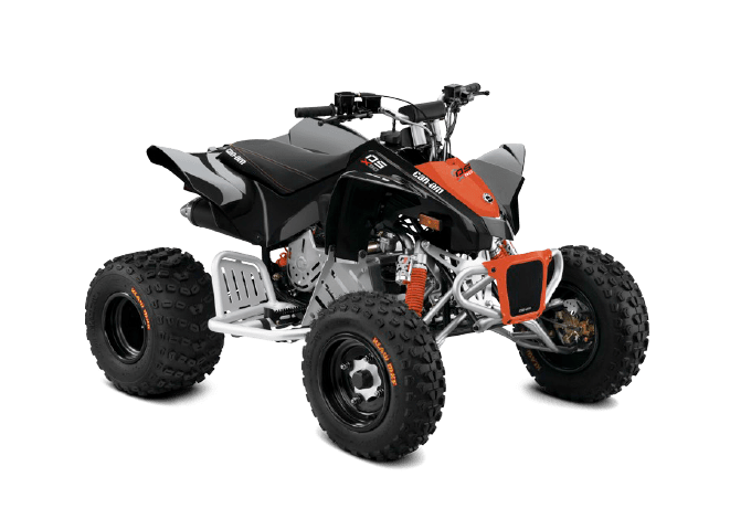 Can-Am DS 90 (2020)