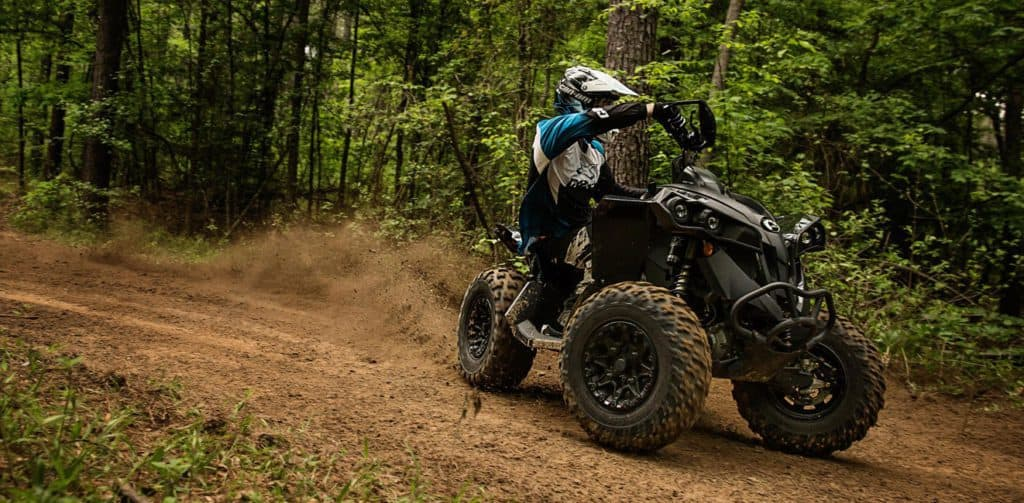Can-Am Renegade 650 X XC (2020)