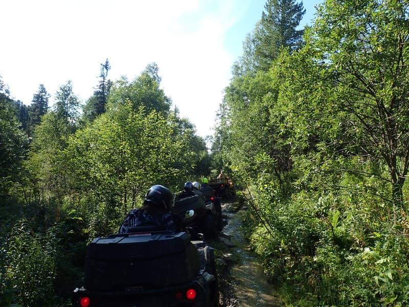 Путешествие по Алтаю на квадроциклах!