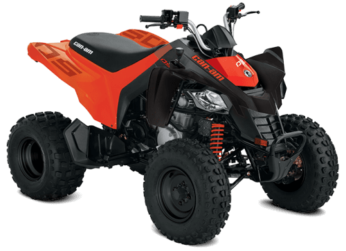 Can-Am DS 250 (2020)